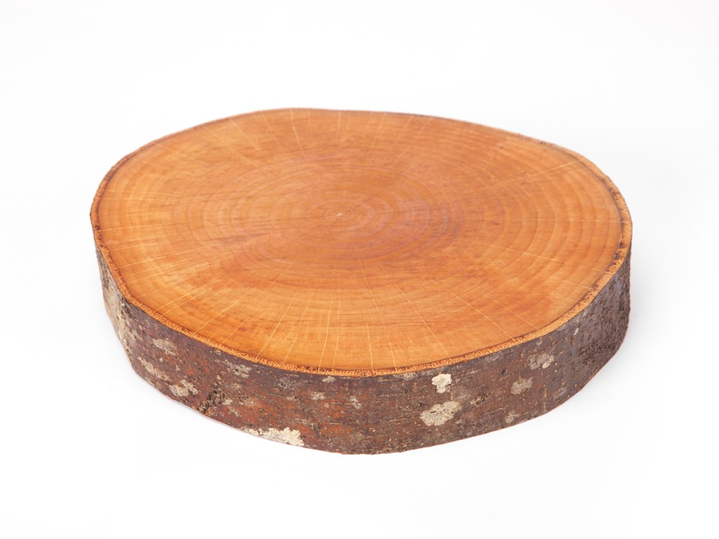 Natural Alder Wood Round